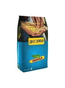 Семена кукурузы ДКС 3969 Max Yield