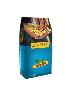 Насіння кукурудзи ДКС 4964