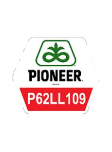 П62ЛЛ109/P62LL109