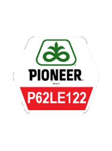 П62ЛЕ122/P62LE122 Круїзер