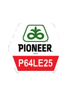 П64ЛЕ25/P64LE25
