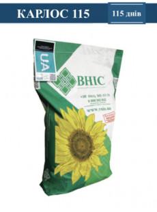 Семена подсолнечника КАРЛОС 115