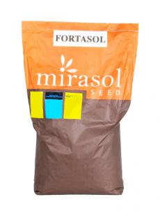 Насіння соняшнику Фортасол SU+OR7