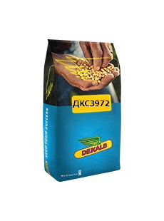 Насіння кукурудзи ДКС 3972 Max Yield