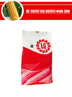 Насіння кукурудзи ЛГ 30267