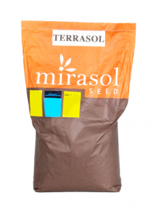 Насіння соняшнику Террасол OR7+HO