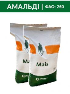 Семена кукурузы Амальди